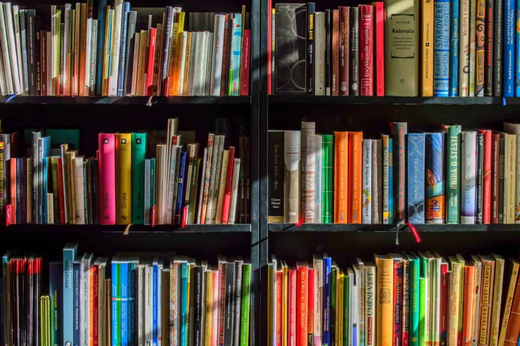 A bookshelf containing dozens of colorful hardcover and paperback books.